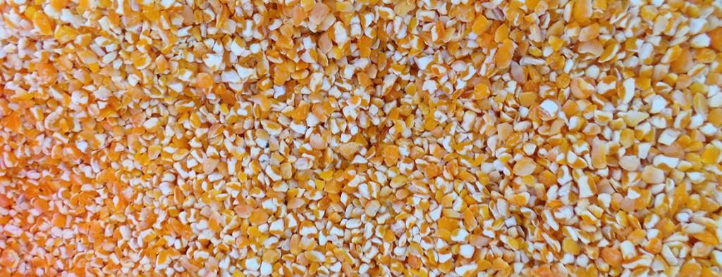 Maize Broken